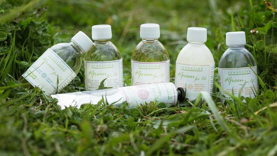 """""""Green for Oil"""", umweltfreundliche Additive für Ölfarben 0"""